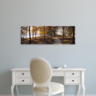 Easy Art Prints Panoramic Image 'Trees In A Forest, Sleeping Bear Dunes National Lakeshore, Michigan, USA' Canvas Art