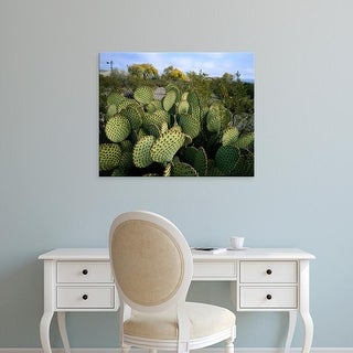 Easy Art Prints Scott T. Smith's 'Prickly Pear Cactus' Premium Canvas Art