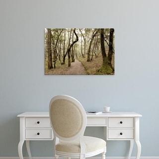 Easy Art Prints Alan Blaustein's 'Oak Tree #47' Premium Canvas Art
