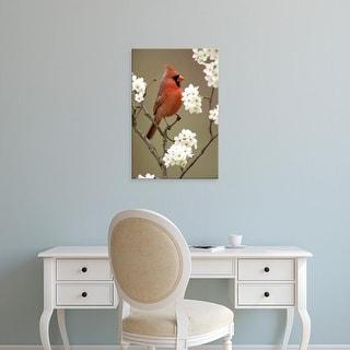 Easy Art Prints Adam Jones's 'Male Northern Cardinal' Premium Canvas Art