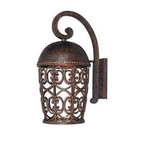 Designers Fountain 97593 1-Light Down Lighting Outdoor Wall Lantern from the Dark Sky Amherst Collection - Burnt Umber - N/A