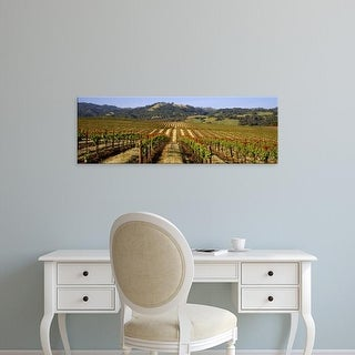 Easy Art Prints Panoramic Images's 'Vineyard, Geyserville, California, USA' Premium Canvas Art