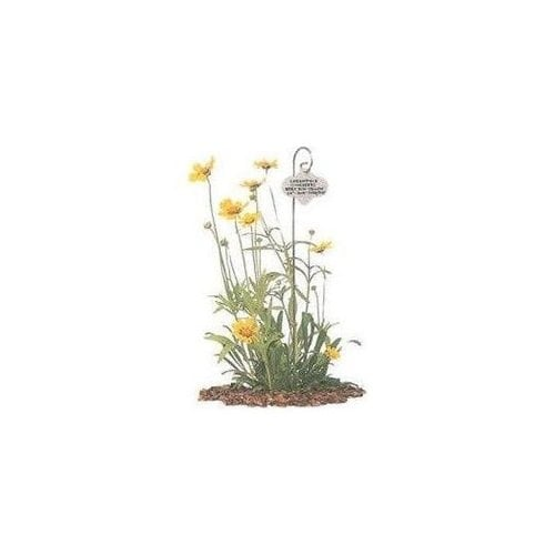 Bosmere H420 Bulk Wren Stainless Steel Garden Markers Pack Of 120 Free Shipping Today 27091609