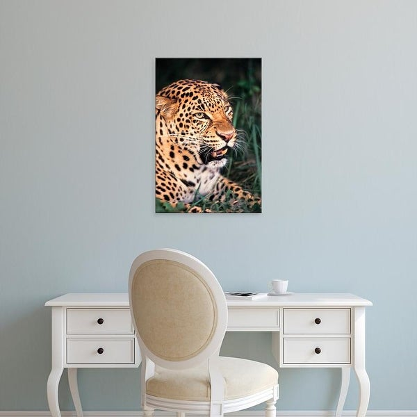 Easy Art Prints Adam Jones's 'Asian Spotted Leopard' Premium Canvas Art