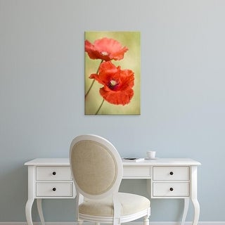 Easy Art Prints Mandy Disher's 'Papaver Passion' Premium Canvas Art