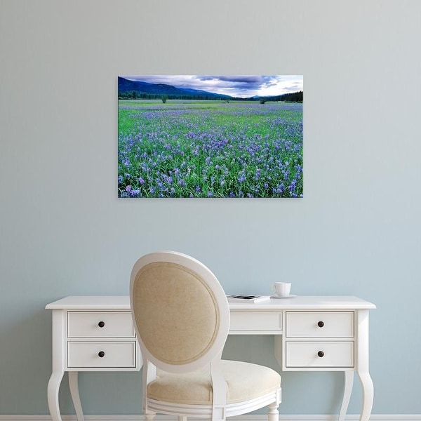 Easy Art Prints Chuck Haney's 'Large Field Of Blue Camas Wildflowers' Premium Canvas Art