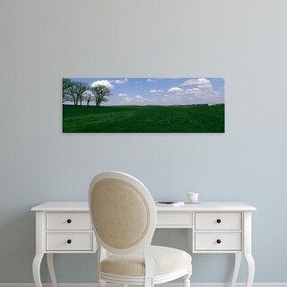 Easy Art Prints Panoramic Images's 'Trees in a farm, Illinois, USA' Premium Canvas Art