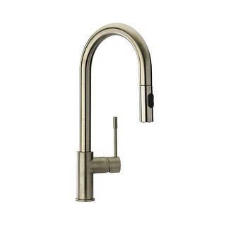 Fortis 78591LL Pullout Multi-Function Spray Kitchen Faucet