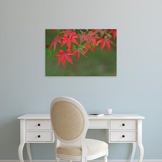 Easy Art Prints Rob Tilley's 'Maple Leaves' Premium Canvas Art