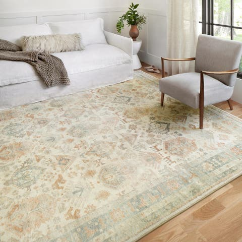 Alexander Home Juliet Ultra-Soft Distressed Traditional Persian Rug