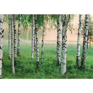 Brewster DM290 Nordic Forest Large Wall Mural - N/A
