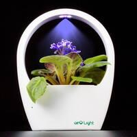 LED Plant Grow Light Kit Lamp for Indoor Flower Plant Garden Desktop USB Lamp