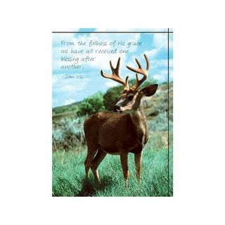 Divinity Boutique 186358 Single Cards-Moose - Pack of 6
