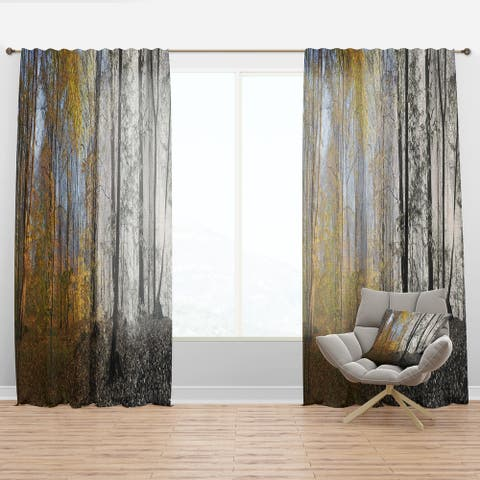 Designart 'Yellow Morning in Forest Panorama' Landscape Curtain Panel