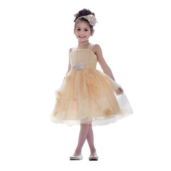 Think Pink Bows Baby Girls Beige Floral Tulle Aurora Flower Girl Dress 1Y
