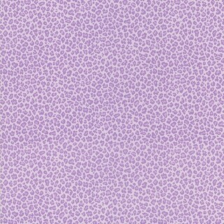 Brewster 443-62507 Sassy Purple Cheetah Print Wallpaper