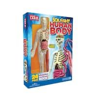 Human Skull and Brain - SmartLab Toys Squishy Body Toy Set - multi