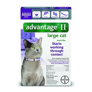 Advantage II for Cats over 9lbs. 6 Pack