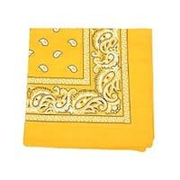Mechaly Paisley 100% Polyester Unisex Bandanas - 40 Pack - Bulk Wholesale
