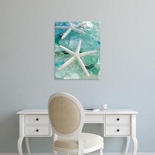 Easy Art Prints Alan Blaustein's 'Seaglass 1' Premium Canvas Art