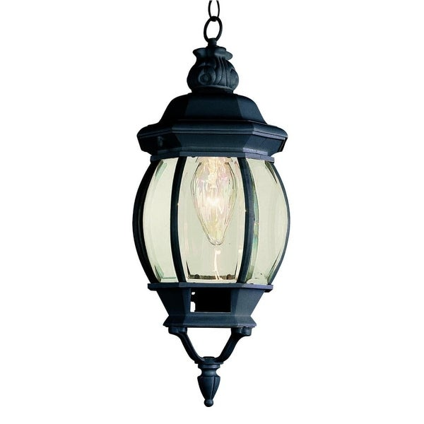 Trans Globe Lighting 4065 1-Light Down Lighting Small Outdoor Pendant from the Outdoor Collection
