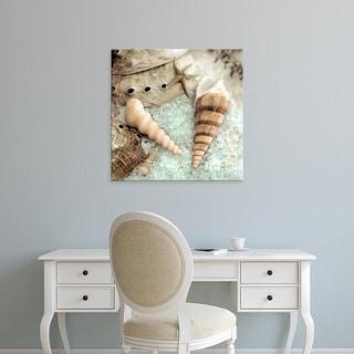 Easy Art Prints Alan Blaustein's 'Lagoon Tidepool #1' Premium Canvas Art