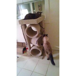 New Cat Condos Premier Triple Cat Tunnel