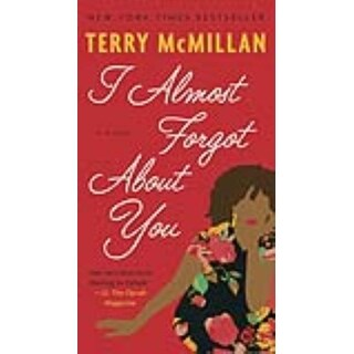 I Almost Forgot About You - Terry McMillan