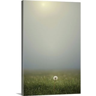 """Dandelion on meadow, both covered with morning dew water drops and foggy background."" Canvas Wall Art"