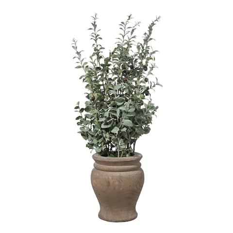 Uttermost Tassos Potted Olive