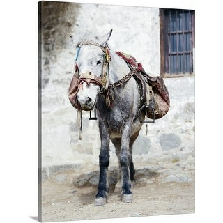 Premium Thick-Wrap Canvas entitled Tibetan Horse