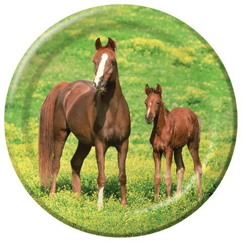 """8 Pack 8 3/4"""" Plates Wild Horses - Multi"""
