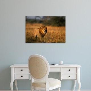 Easy Art Prints Paul Souders's 'Chobe National Park Male Lion' Premium Canvas Art