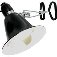 Agrosun Dayspot Grow Light Kit