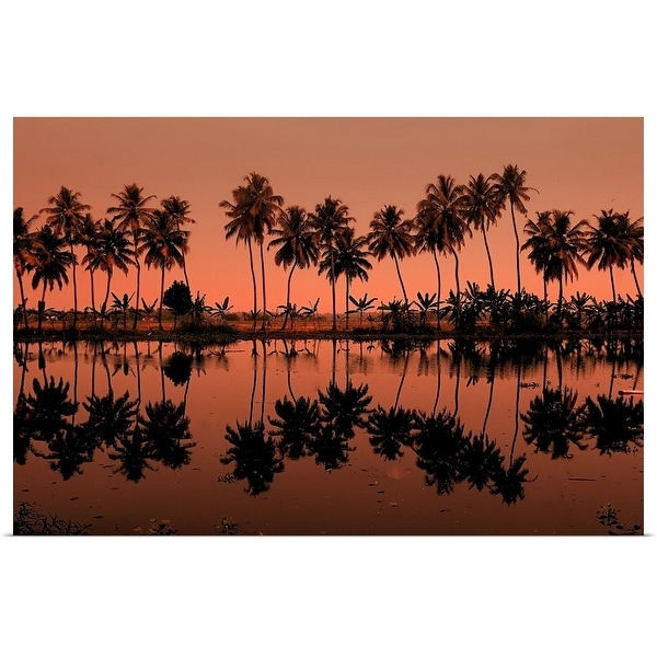 """Row of palm trees during sunset at Kumarakom, India."" Poster Print"