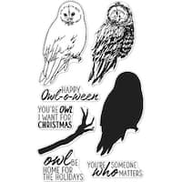 "Hero Arts Clear Stamps 4""X6""-Color Layering Owl"