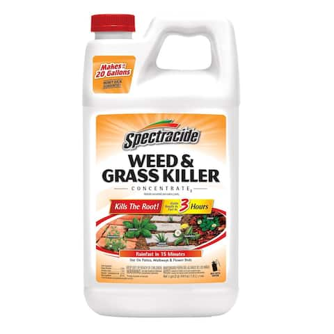 Spectracide HG-96451 Weed & Grass Killer Concentrate2, 64OZ