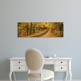 Easy Art Prints Panoramic Images's 'Autumn Road, Emery Park, New York State, USA' Premium Canvas Art