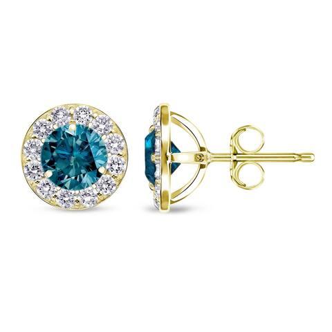 Auriya 1/2 to 2ctw Blue Diamond Halo Stud Earrings 14k Yellow Gold