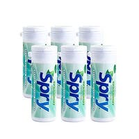 Xlear Spry Gum Tube Refill, Spearmint, 6 Count