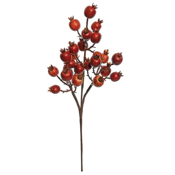 "16"" Autumn Harvest Rust Rose Hip Artificial Thanksgiving Spray - RED"