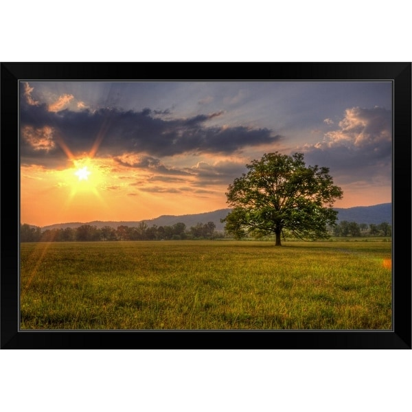 """Sunset behind lone tree in field, Great Smoky Mountains National Park."" Black Framed Print"