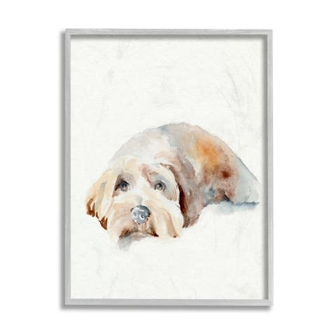 Stupell Industries Scruffy Dog Laying Down House Pet Painting Framed Wall Art