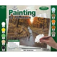 422123 Adult Paint By Number Kit 15.38 in. x 11.25 in. -Symonds Creek