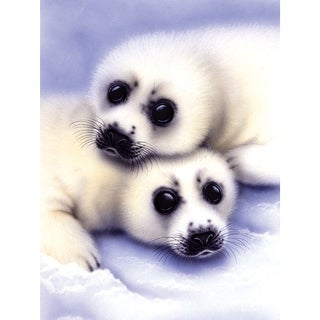"""Junior Small Paint By Number Kit 8.75""""X11.75""""-Seal & Pups"""