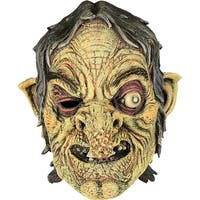 Witch Full Adult Halloween Costume Accessory Mask - standard - one size