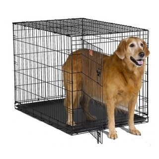 MidWestA 1542 iCrateA Single Door Folding Dog Crate, Satin Black, 42""