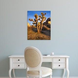 Easy Art Prints Charles Gurche's 'Joshua Tree And Granite' Premium Canvas Art