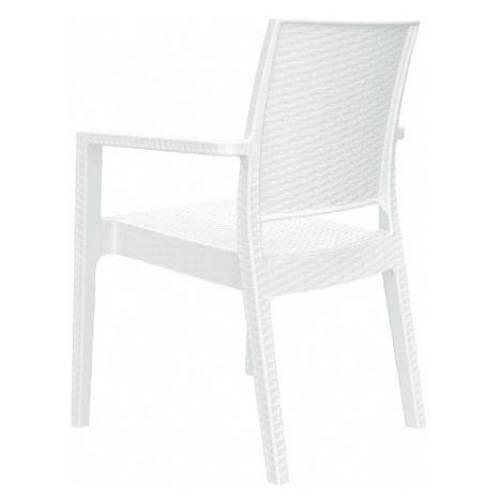 Ibiza Resin Dining Arm Chair [Set of 2] - White