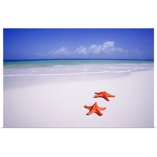 """""""Two starfish on white tropical beach"""" Poster Print"""
